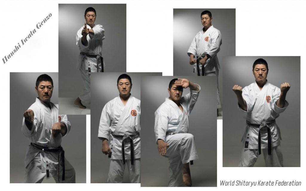Master-Genzo-Iwata