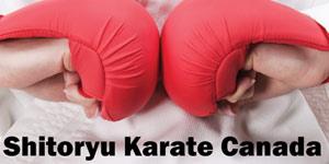 Shitoryu Karate Canada, Team Training Camp