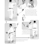 Shitoryu Karate book by Sensei Tanzadeh - Heian Godan Kata