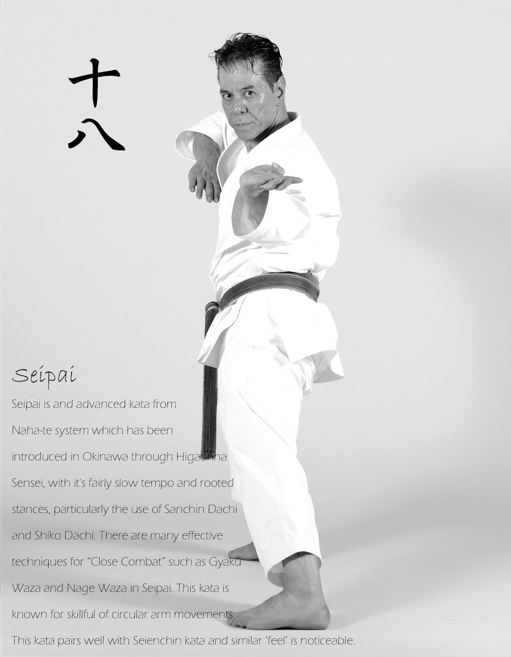 Shitoryu-Kata-Seipai-Tanzadeh-Sensei