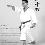 Shitoryu-Niseishi-Kata---Tanzadeh