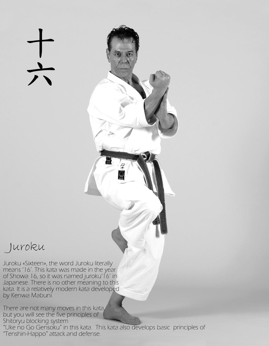 Juroku-kata-by-Sensei-Tanzadeh