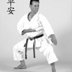 Sensei-Tanzadeh-Heian-Nidan-Kata