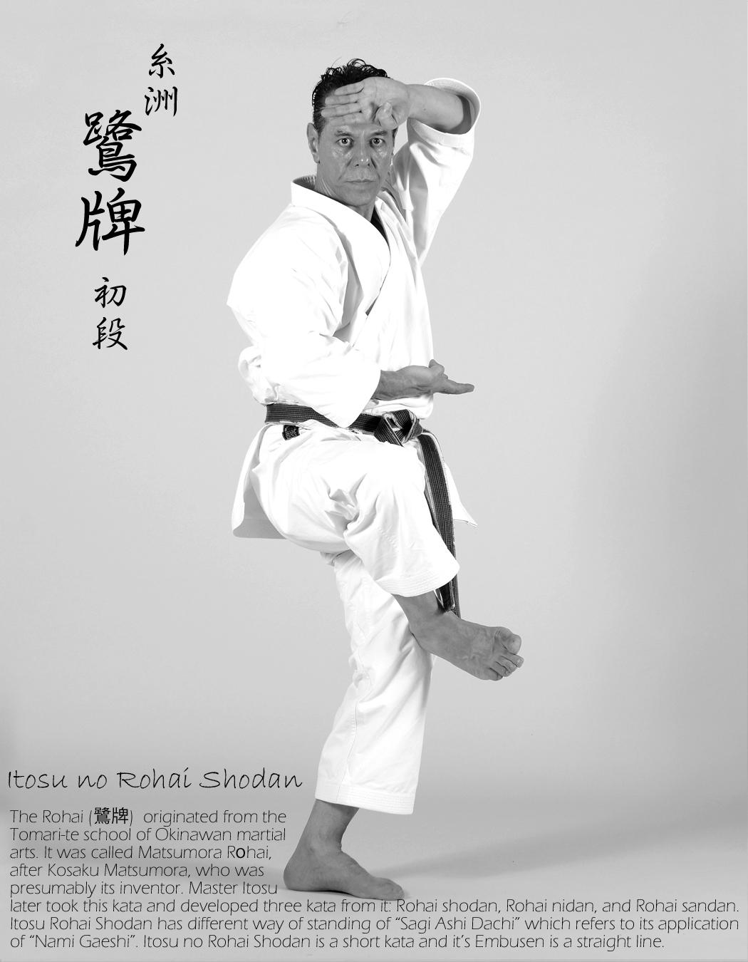 Sensei-Tanzadeh-performing-Itosu-Rohai-Shodan