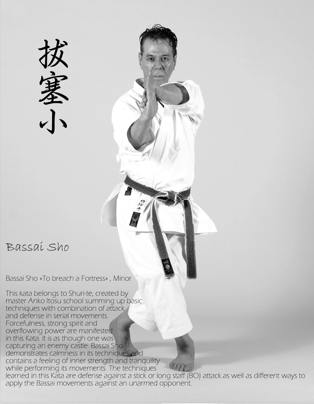 Sensei-Tanzadeh-performing-Bassai-Sho
