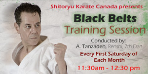 Black Belts Training Sessions