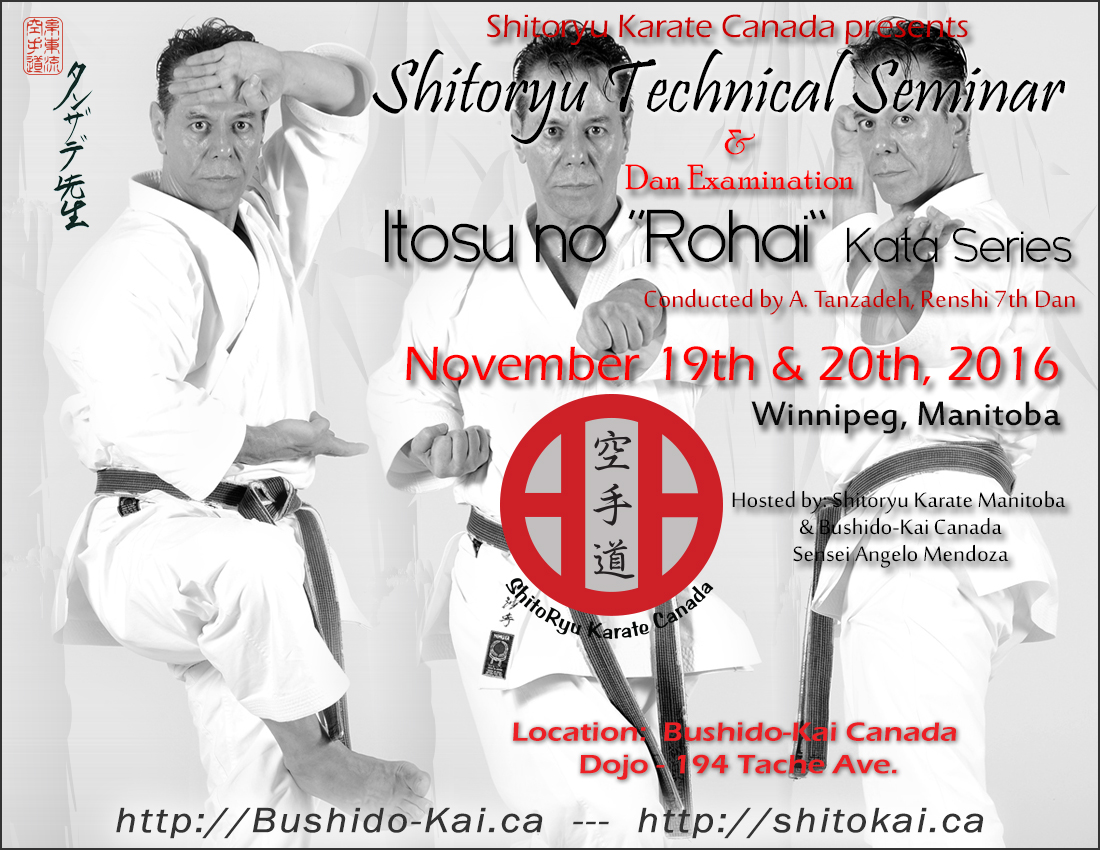 Sensei Tanzadeh Techinical Seminar in Winnipeg