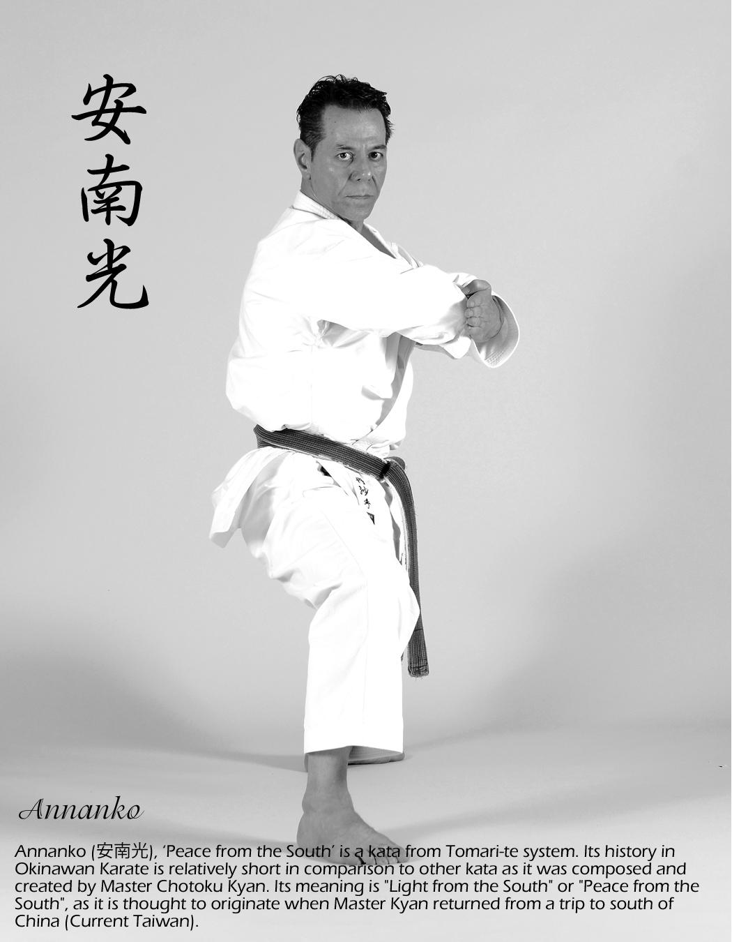 Sensei-Tanzadeh-Performing-Annanko-Kata