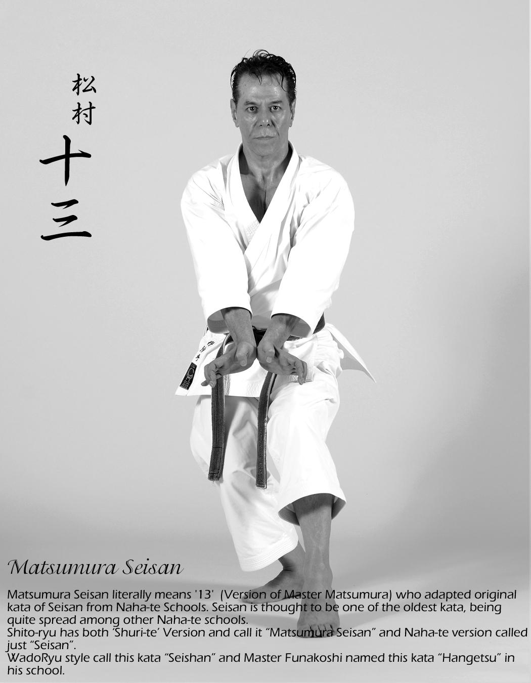 Sensei Tanzadeh performing Matsumura Seisan