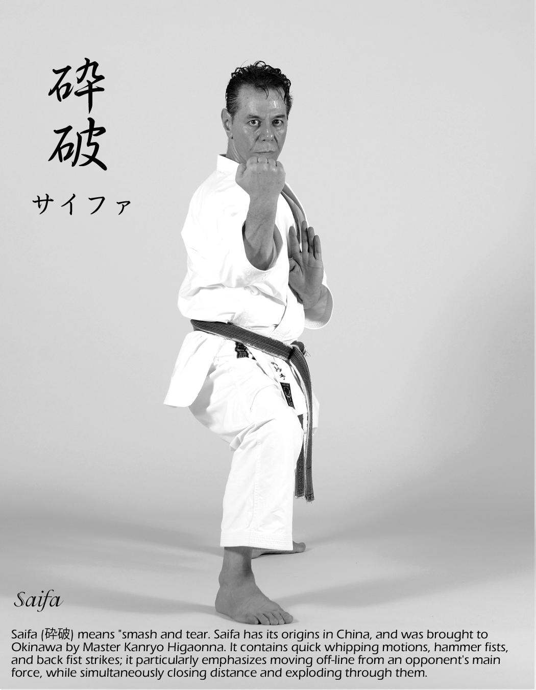 shitoryu-karate-kata-saifa-performing-by-tanzadeh-sensei