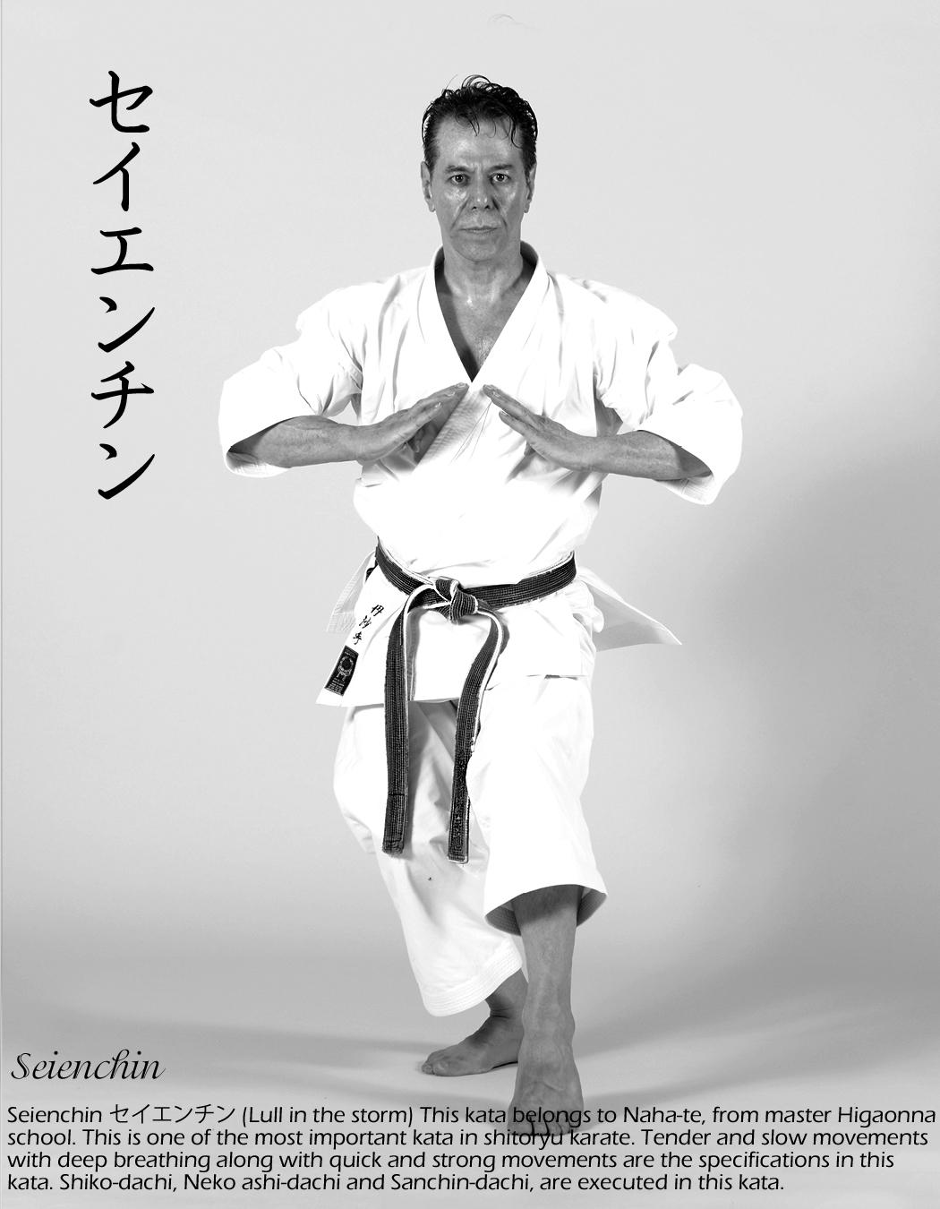 Sensei Tanzadeh performing Seienchin Kata