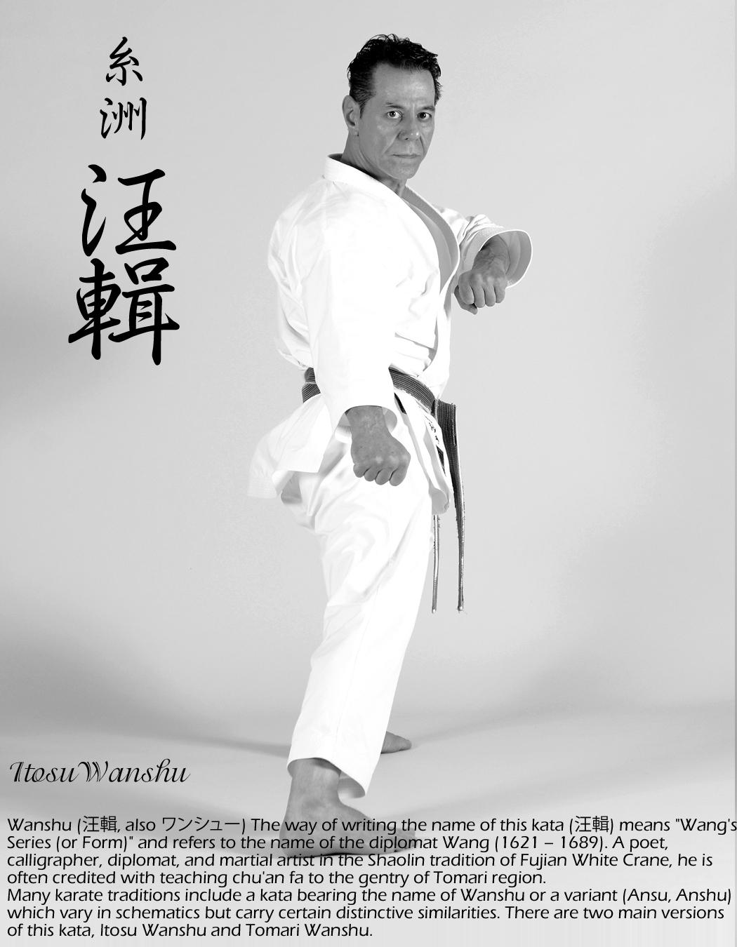 Sensei Tanzadeh performing Itosu Wanshu Kata