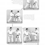 Hokei Kumite Heian Godan, Yokusoku Kumite of Heian Godan