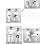 Hokei Kumite Heian Shodan, Yokusoku Kumite of Heian Shodan