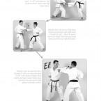 Hokei Kumite Heian Nidan, Yokusoku Kumite of Heian Nidan