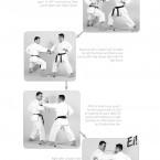 Hokei Kumite Heian Yondan, Yokusoku Kumite of Heian Yondan