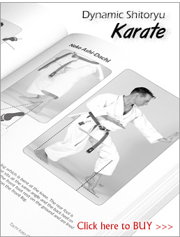 Dynamic Shitoryu Karate by A.Tanzadeh